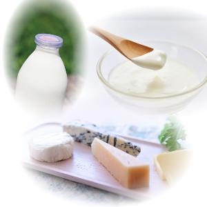 γ-GTP下げる牛乳ヨーグルトチーズ