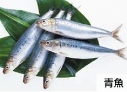 レバーザイム成分⑥_青魚エキス(EPA・DHA・オメガ3)