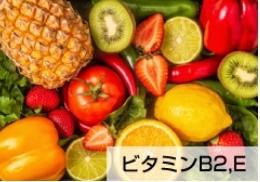 レバーザイム成分⑧_ビタミンB2・ビタミンE